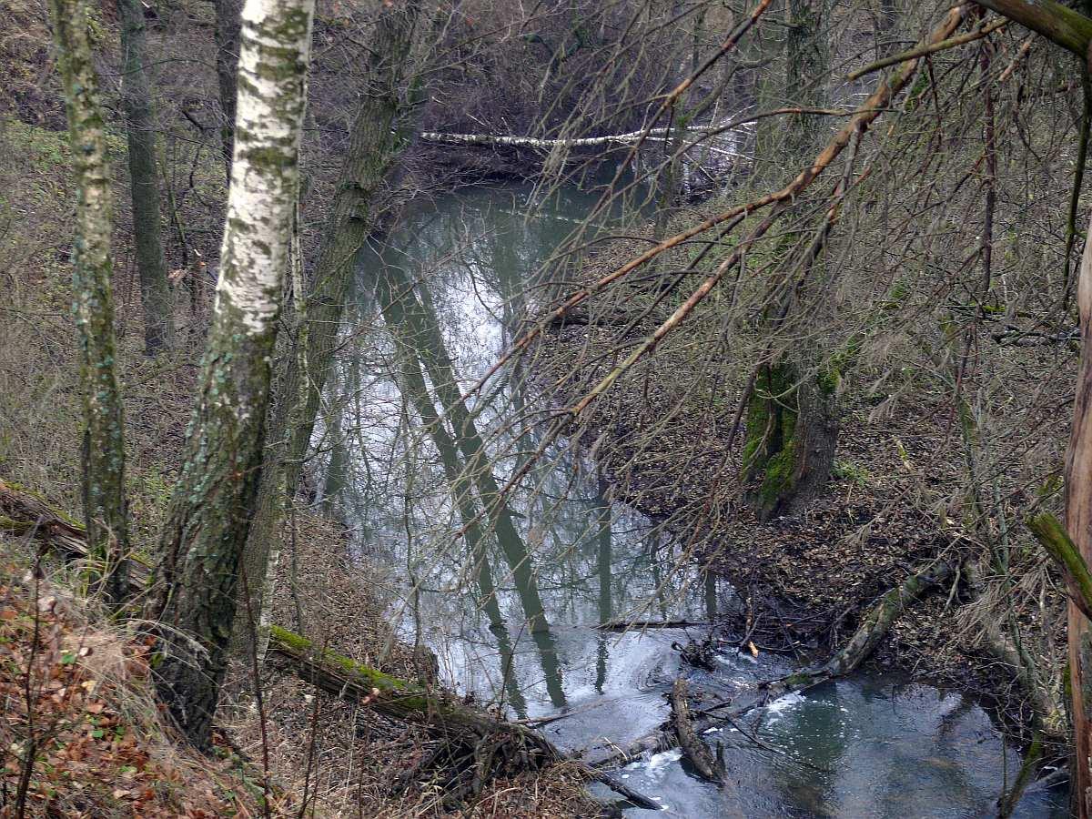 река востец рыбалка ильинское